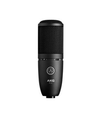 AKG P120, Microfono...